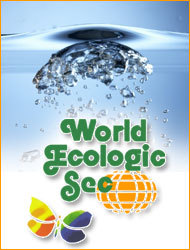 World Ecologic Sec, franquicia World Ecologic Sec, World Ecologic Sec franquicia, franquicia