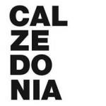 Franquicia Calzedonia