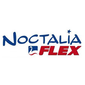 Noctalia, Franquicia Noctalia, colchones, descanso, complementos descanso