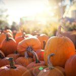 Las franquicias se preparan para un Halloween terrorífico