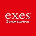 Franquicia Exes-Grupo Expofincas