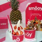 Redes Sociales, Comunicación y Marketing Digital: la apuesta de éxito de la franquicia smöoy