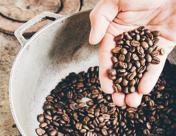 Cafés 100% ecológicos en la franquicia Santagloria